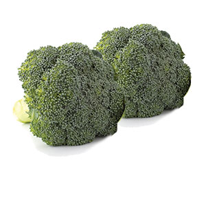 404060_ONT_Broccoli20210420.jpg
