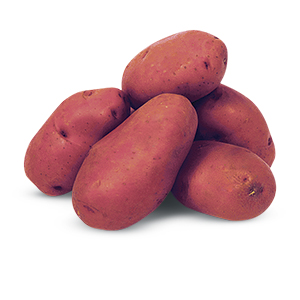 404073_Red_Potatoes20180918.jpg