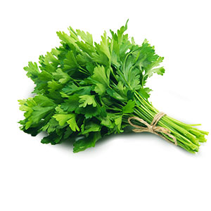 404900_Flat_Parsley20200218.jpg