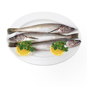 909151_Fresh_Fish_Whiting_Merluzzo20190521.jpg